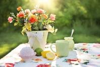 Jak stworzyć strefę relaksu w ogrodzie?